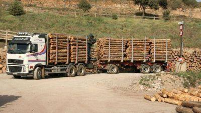 """Schepens dijo que la reforma a la ley de la madera es para """"corregir"""" el """"estancamiento"""" del sector"""
