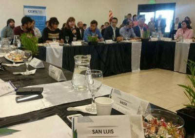Con participación de San Luis, el COFEMA debatió en Chaco el presupuesto 2017 para los bosques nativos