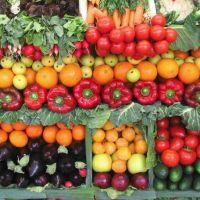 Mendoza y la necesidad de ser una provincia con alimentaci�n saludable