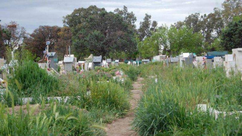 El cementerio cipole�o luce en total estado de abandono