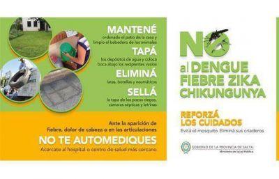 Mañana se firmarán convenios con Tartagal y Orán para reforzar acciones contra el mosquito Aedes aegypti