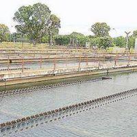 Licitan una megaobra para modernizar la planta de Punta Lara