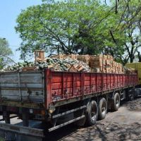 Narco zapallitos: la causa tiene siete imputados y declarar� el due�o de la empresa