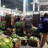 Denuncian explotaci�n laboral en los mercados frutihort�colas de Mar del Plata