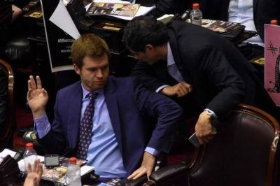 Diputados dio media sanci�n a la reforma pol�tica