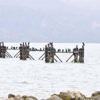 Se hizo formal reclamo por las obras para que Comodoro Rivadavia tenga agua potable