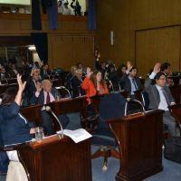 La Legislatura rechaz� la �operaci�n pol�tica� de Naidenoff �contra Formosa�
