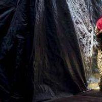 Human Rights Watch denunci� que no hay un plan para los menores de Calais