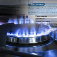 Un 30% de los hogares salte�os tiene tarifa social de gas