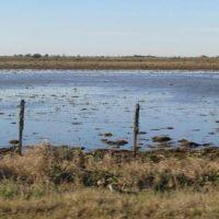 Inundaciones: ministro anuncia la pr�rroga de la emergencia de campos