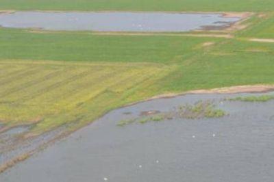 Aseguran que el 60% de la zona rural de General Villegas se encuentra bajo agua