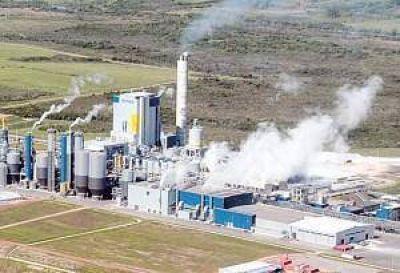 Sin expectativas, ambientalistas desconf�an de los estudios sobre el r�o Uruguay