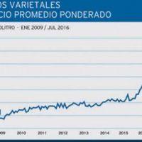 Fuertes aumentos registrados en los precios de uvas y vinos
