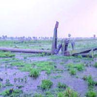 Apag�n en la provincia: Desde REFSA informaron que el origen fue en Resistencia-Chaco