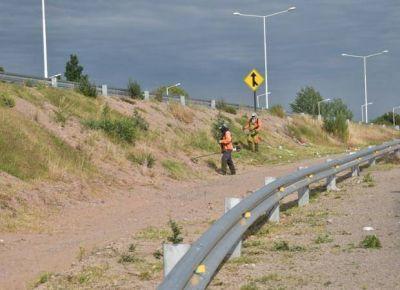 Limpian y desmalezan las banquinas de la Ruta Nº 147