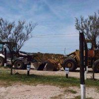 La Justicia orden� el cese de la tala y desmonte en Alfar