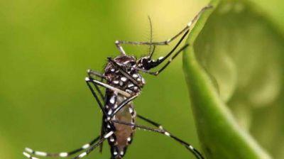 La Unse se suma a la campaña nacional contra los mosquitos del Ministerio de Salud nacional
