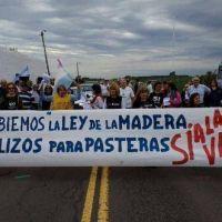 El Gobierno recibir� a ambientalistas de Gualeguaych� para dialogar sobre la reforma de la Ley de la Madera