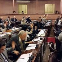 Obtuvo media sanci�n de Diputados la reglamentaci�n de la consulta popular