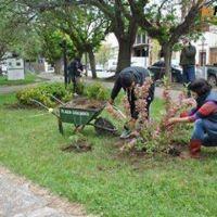 Tareas de embellecimiento en espacios verdes de Patagones