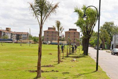 Avanza con éxito el Plan de Forestación en San Fernando