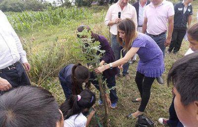 La Secretaría de Ambiente continúa la campaña de forestación en La Viña
