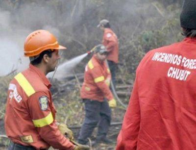 Prevención y educación para una efectiva protección forestal