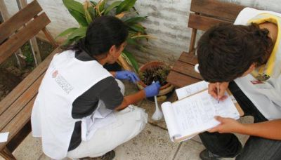 Dengue: mayor riesgo en floreros, botellas y piletas
