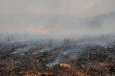 La Provincia decretó el alerta ambiental por riesgo de incendios