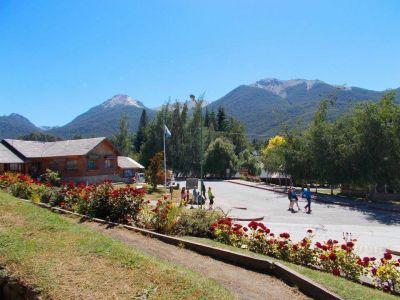 El municipio recibió fondos para restaurar bosque nativos en el área urbana