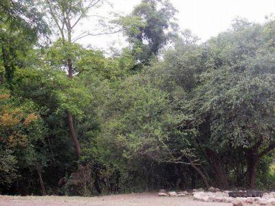 Salta cuenta con una nueva reserva natural