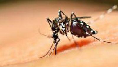 Destacan el trabajo de Tucumán contra el Dengue, Zika y Chikungunya