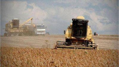 Proyectan menos ventas del aceite de soja a China