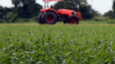 La primera cosecha de Macri sería récord con 130 millones de toneladas de granos