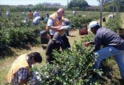De cada 100 empleados, 42 están en negro en la provincia