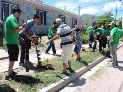 Forestación: más de 100 árboles para los barrios del norte de la capital puntana
