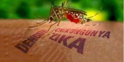 Se confirmó en Tucumán el primer casó autóctono de Zika