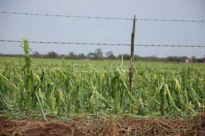 Provincia y Nación evaluarán la zona afectada por el granizo del jueves