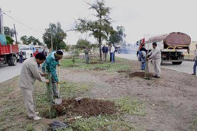Continúan los trabajos de arbolado en diversos barrios de la Capital