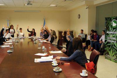 Avanza la ley que autorizará el uso medicinal del cannabis en la provincia de Neuquén