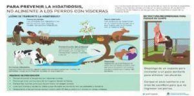 SENASA inició campaña para cortar el ciclo de la hidatidosis