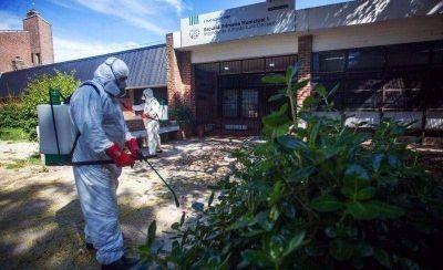 Buscan abrir un laboratorio municipal para producir una bacteria que genera la muerte del virus del dengue