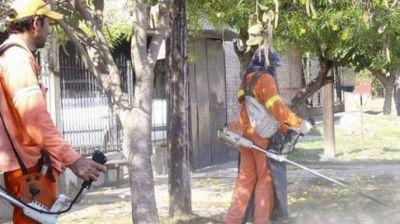 Efectúan intensos trabajos para prevenir el avance del dengue