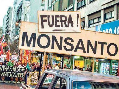 Cuando Monsanto se hizo humo