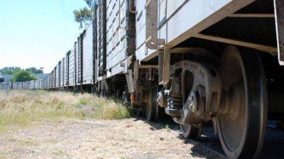 Nación apuesta a reactivar el tren para el desarrollo de Vaca Muerta