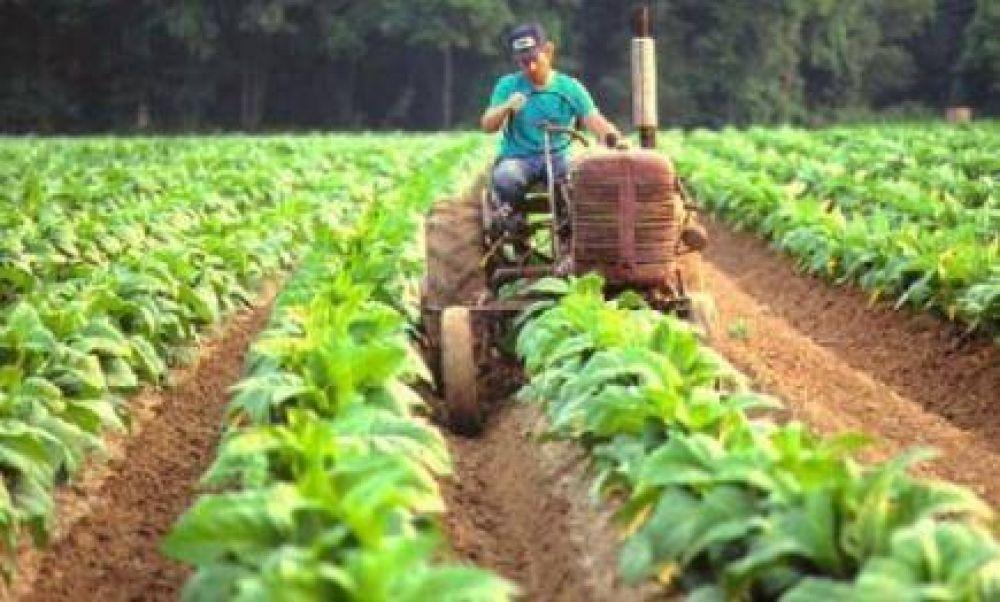 """""""Necesitamos decisión política por sobre la burocracia, para que los recursos lleguen a los productores"""""""