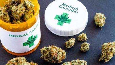 Cannabis medicinal: ¿qué efectos produce la marihuana en la salud?