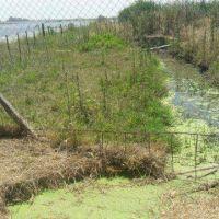 Denuncian el riego de calles con aguas servidas en Sancti Spiritu