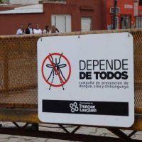Se inició el sábado en Trenque Lauquen la campaña de prevención contra el dengue