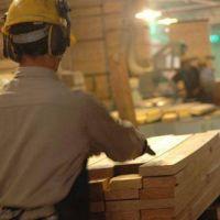 Afirman que el sector exportador puede generar 350 mil puestos de trabajo en el NEA